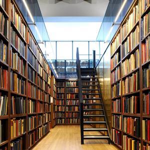 Библиотеки Моргаушей